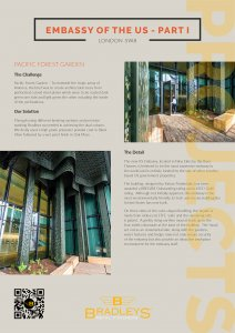 Thumbnail of case study for US Embassy Part I